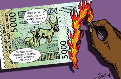 Article : En Afrique, faut-il brûler le Franc CFA ?
